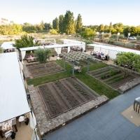 Copia Garden