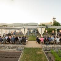 Dinner in Copia Garden