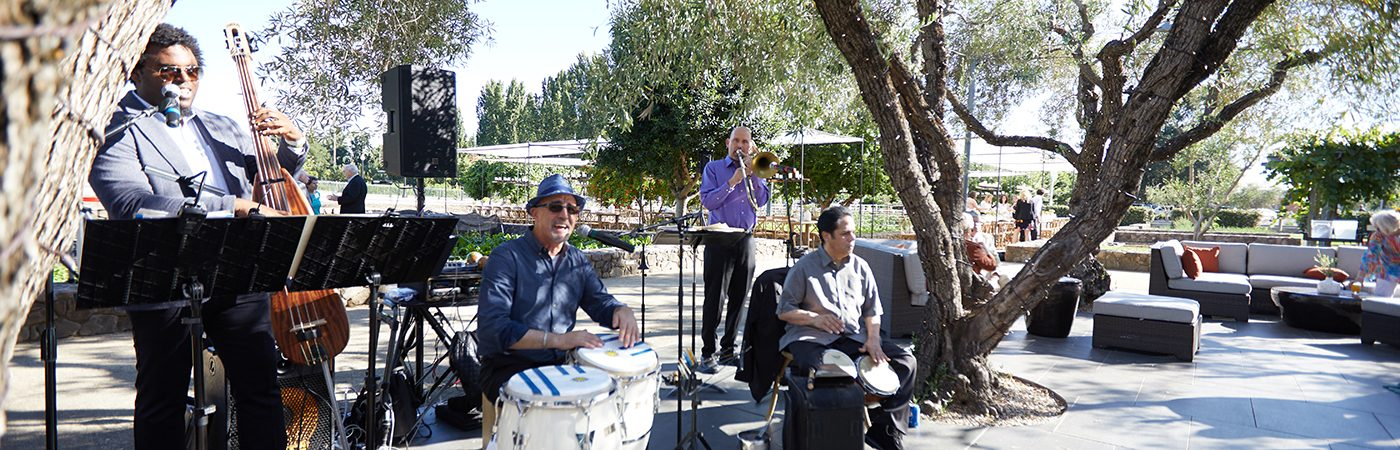band playing in The CIA at Copia Grove